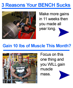 Best Way To Gain Muscle