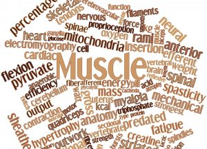 Build Muscle With Muscle Advance Creatine