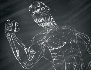 Extreme Muscle Building Program Xtremeno